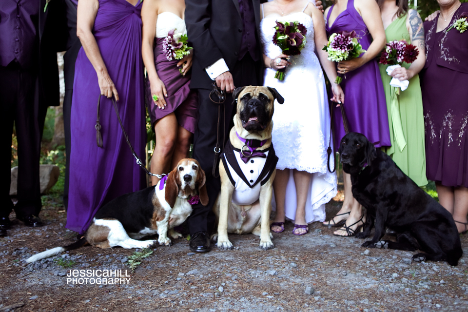 Ranier_weddings7.jpg