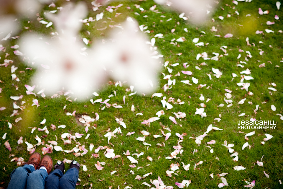 cherry-blossom-engagement-shoot-2.jpg